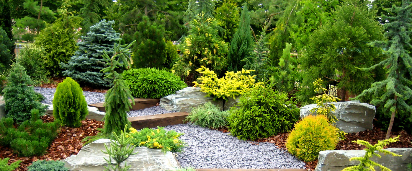Refresh your Landscape With the Help of Our Pros